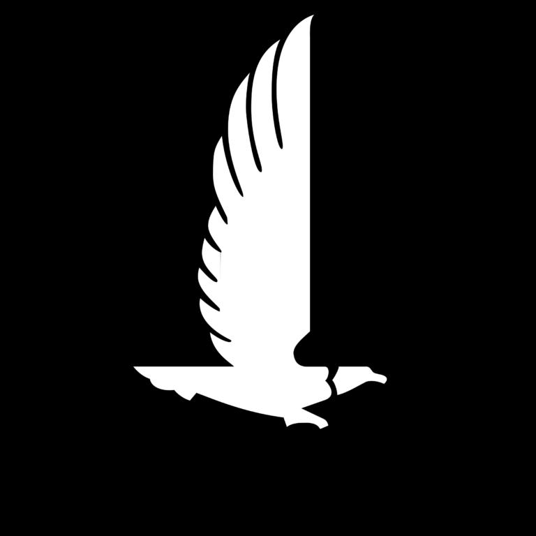 nationwide-insurance-1-logo-png-transparent