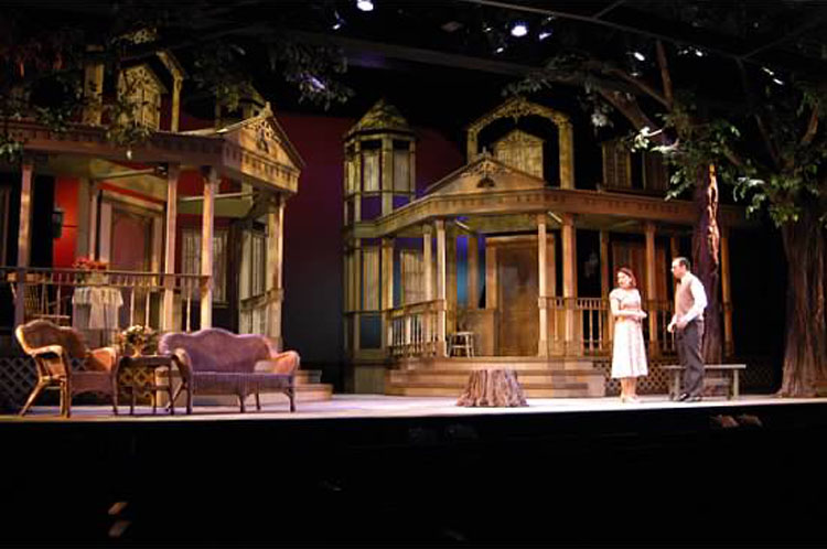 Phoenix Theatre. 2004. Mornings at 7. Robyn Allen, Chris Vaglio. Photo by Laura Durant.