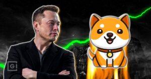 Is Elon Musk behind Baby Dogecoin?