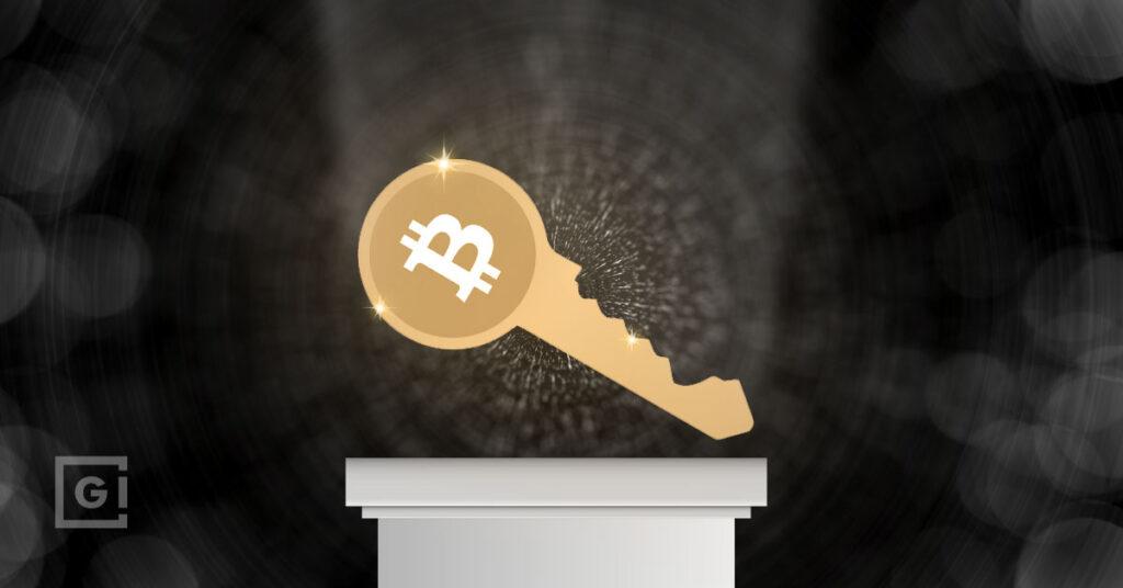 Crypto custodian vs non-custodian wallets