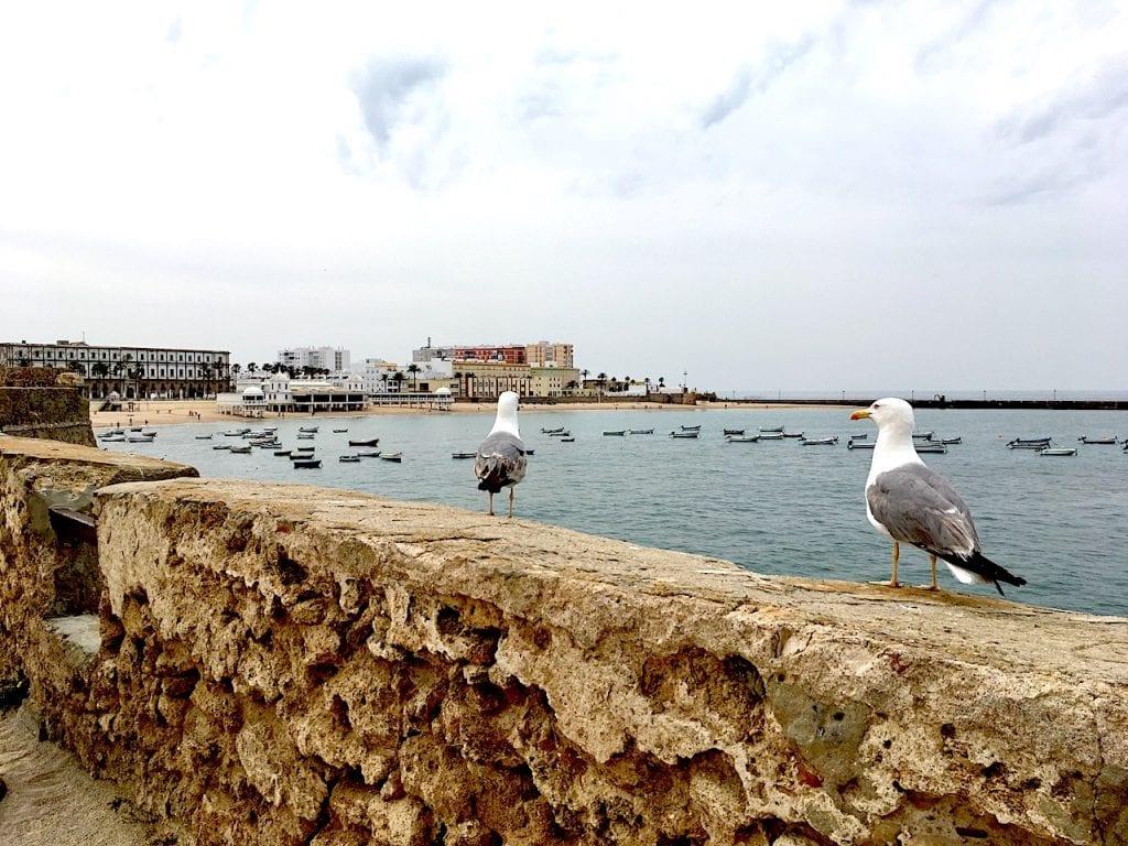 View of Cadiz