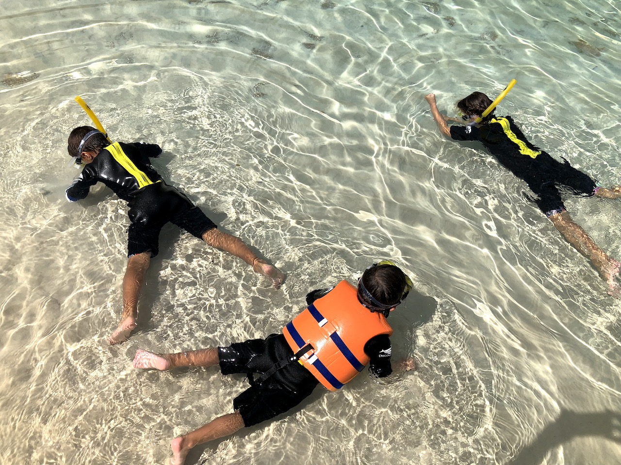 Discovery Cove Snorkeling