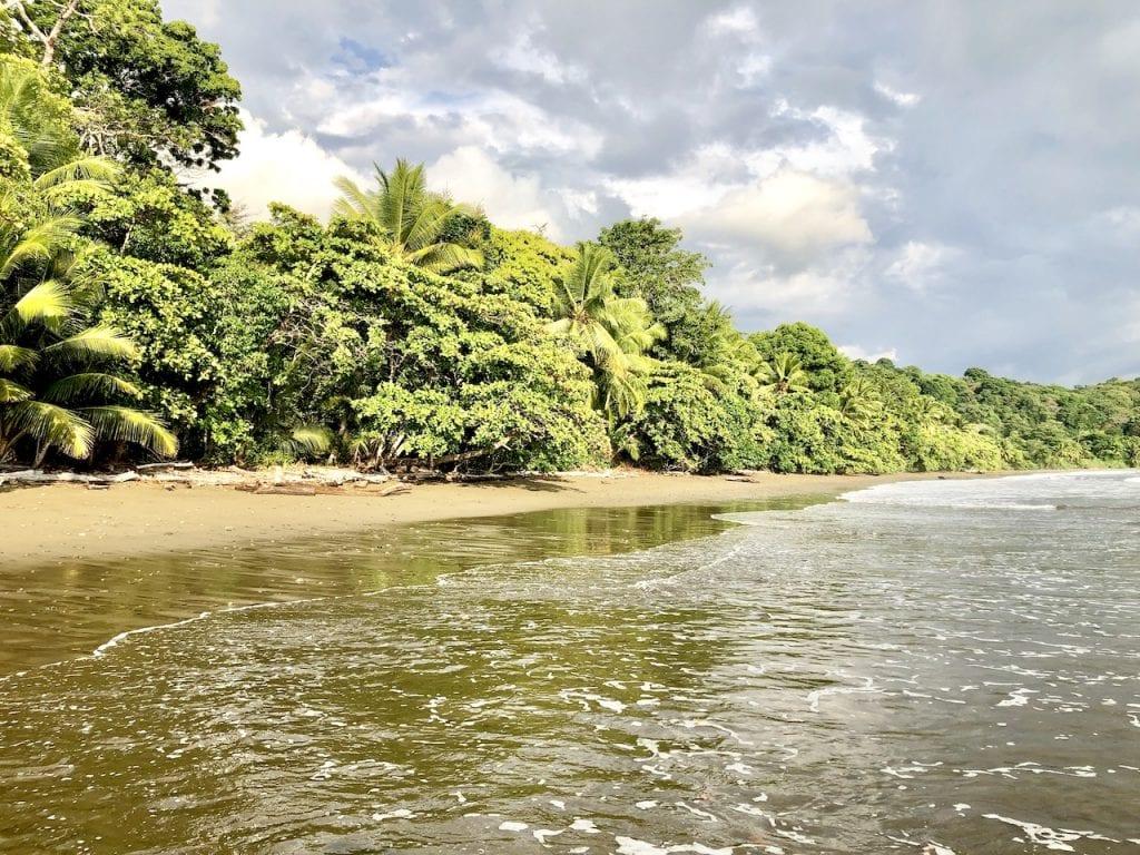 3 Days in Uvita, Costa Rica, With Kids!   Costa Rica travel   Best Costa Rica Beach   Pacific Beach   Marino Ballena Park   Family Travel   Traveling with kids   #familytravel #travelfamily #Uvitacostarica #uvita #costarica #costaricawithkids