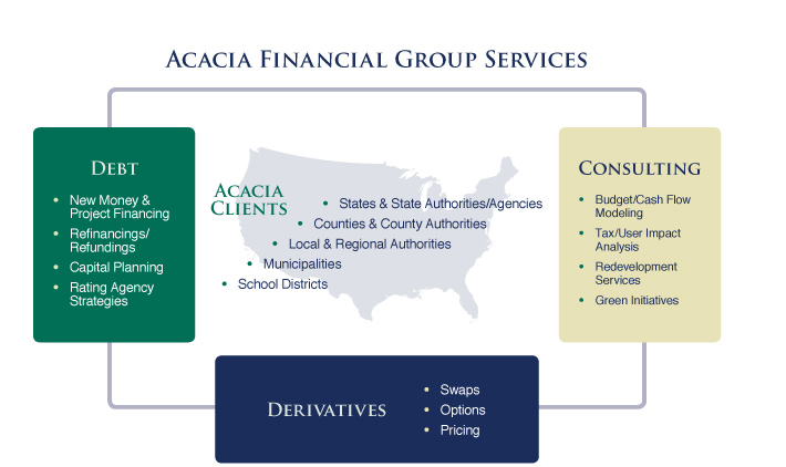 Professional Financial Advisory Services including consulting, debt strategies, and derivatives