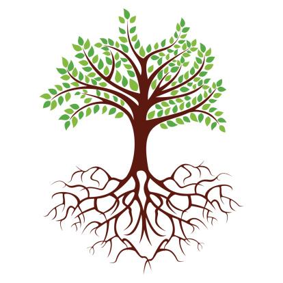 program tree