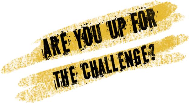 challenge-issued