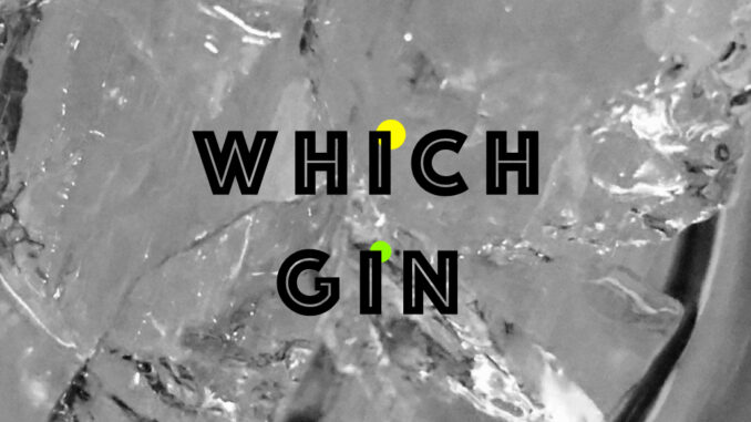 which gin