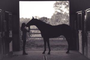equine compounding