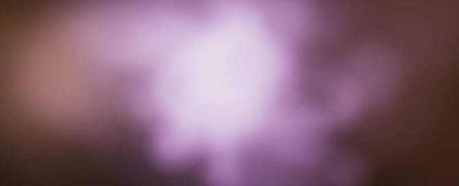 Lupus Foundation Purple Ball