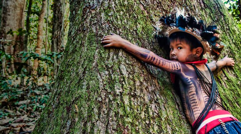 5 Rainforest TERBESAR di Dunia