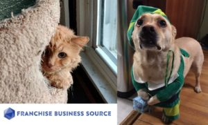 Franchise Friday – Let's Take a Look At PetCare!