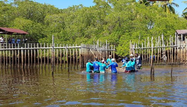 Soltura do peixe-boi Ivi com o apoio da Fundação Toyota do Brasil. Foto: Amauri Yamazaki