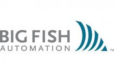 Big Fish Automation