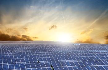 solar panel rows