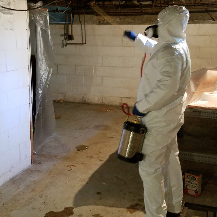Man in chemical suit using a sprayer to treat the wood for powder post beetles