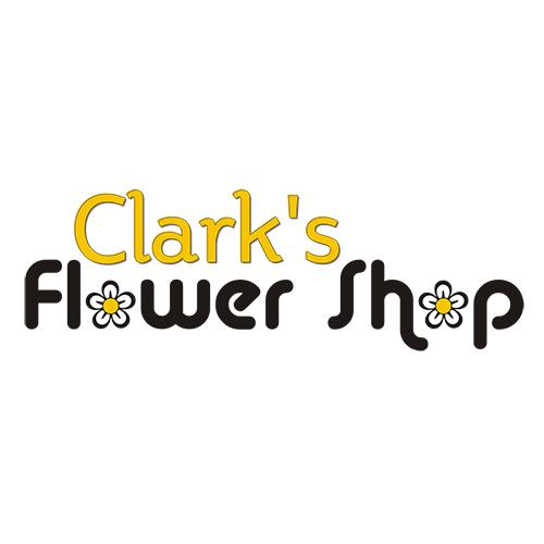 portfolio_logo_clarks-flower