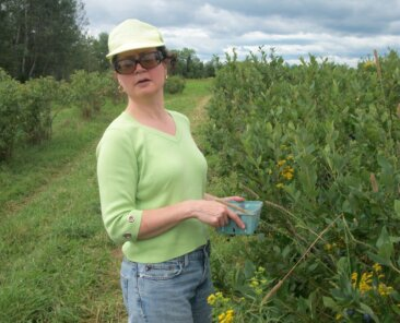 Me picking blueberries