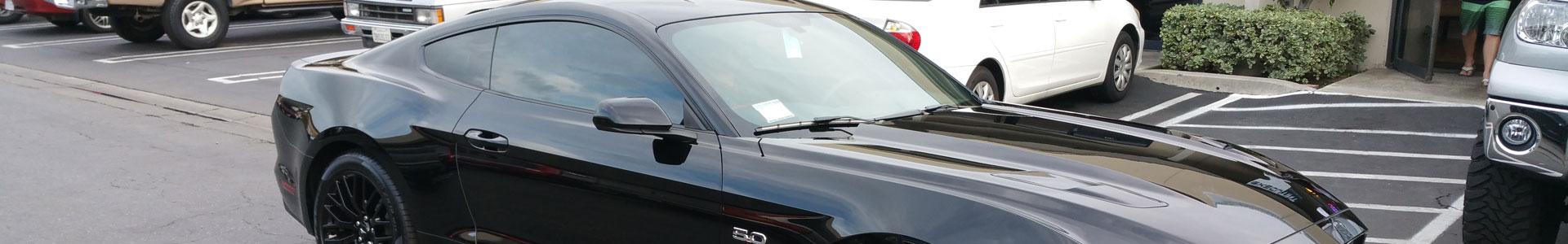 Clear Bra / Paint Protection
