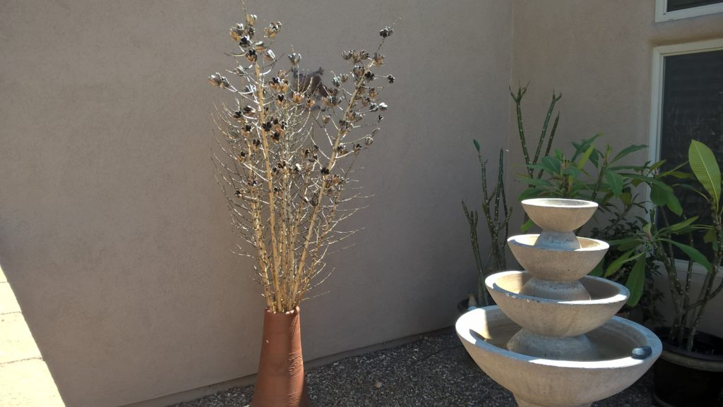 Just an idea for using the Yucca branches around the house