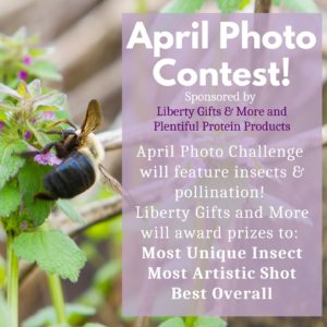 April Photo Contest