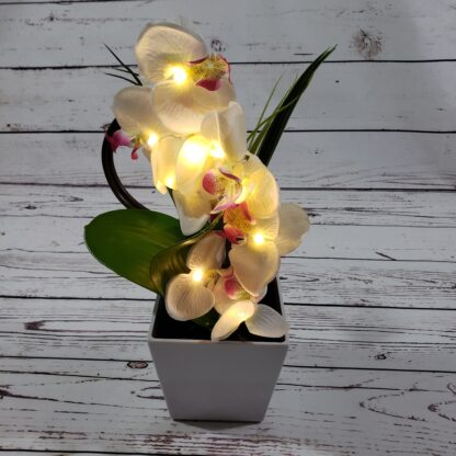 LED Orchid