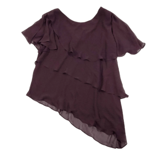 Coldwater Creek Ruffle Top (Size 14)
