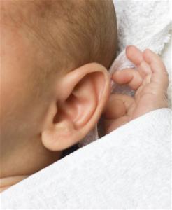 HHR - Baby ear - Hand
