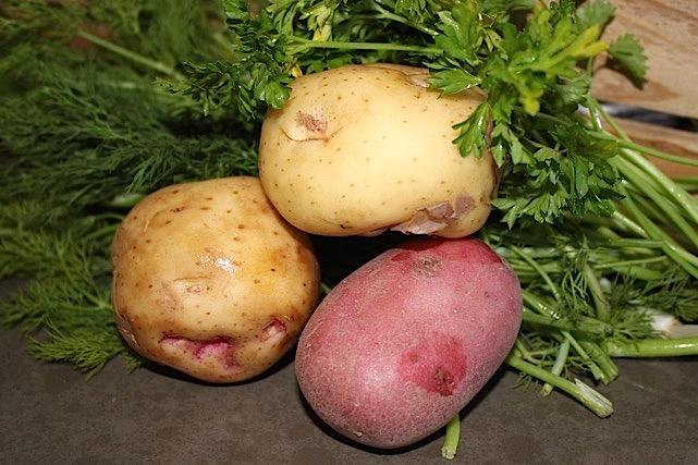 Gorgeous Nugget Potatoes | urbnspice.com