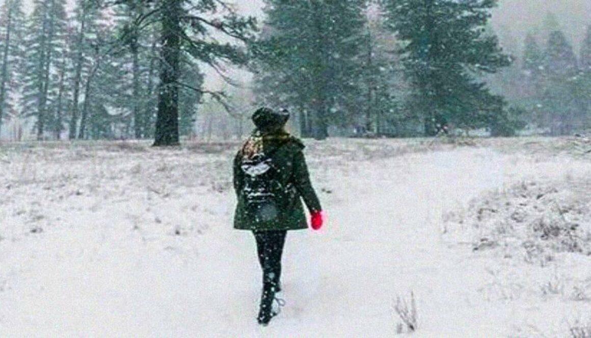 winter-funk