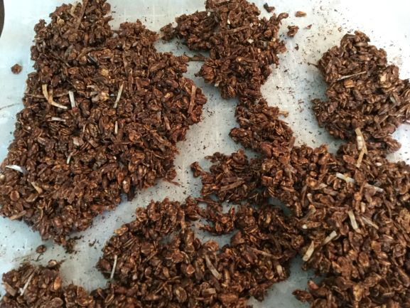 baked-chocolate-granola-with-coconut