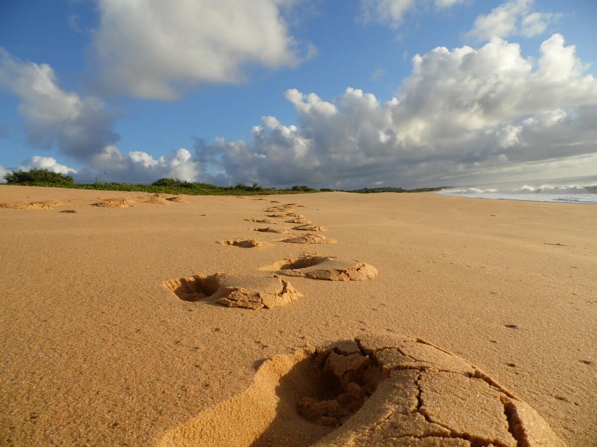 beach-203527_1280