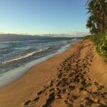 footprints-1772807_1280