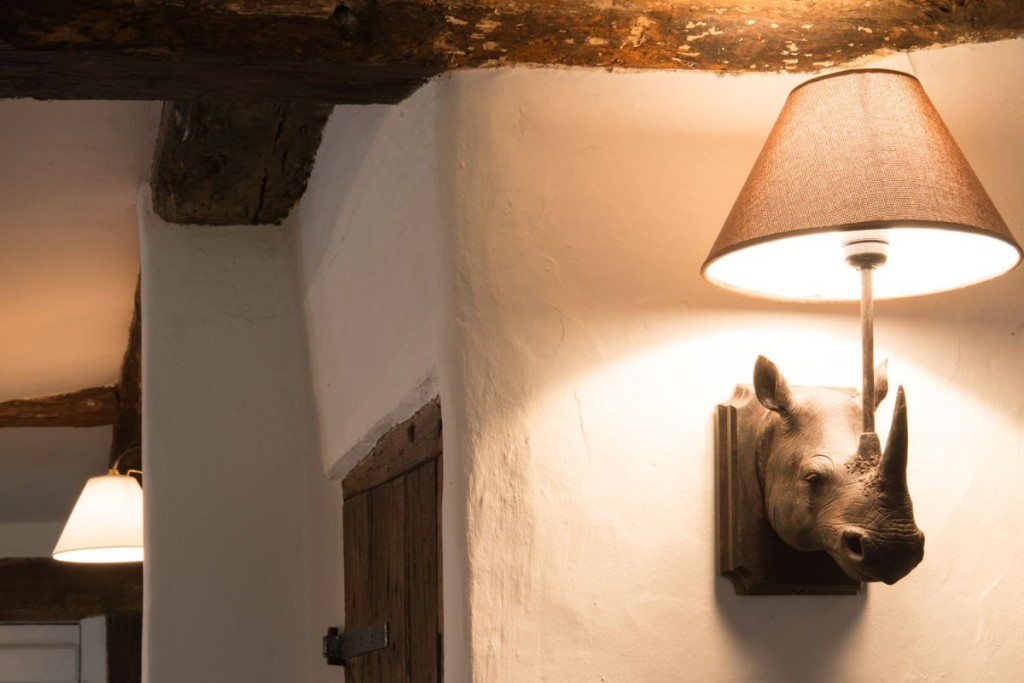 interesting-rhino-lamp
