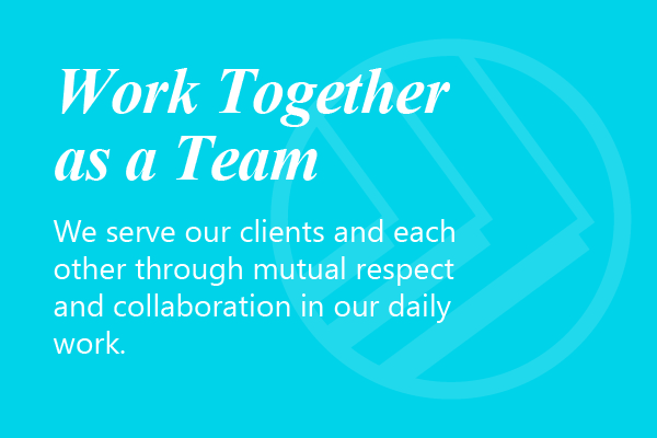 Work Together as a Team