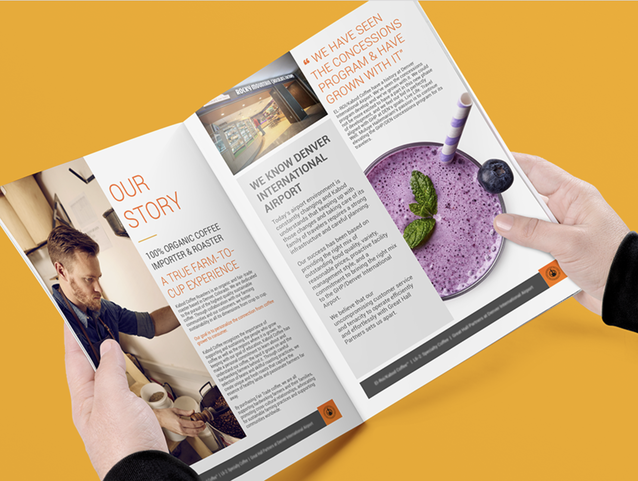 Brochure Design Denver, Colorado | Graphic Design