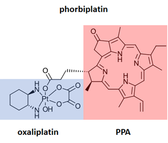 phorbiplatin, an anti-cancer prodrug activated by red light