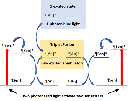 Electron description of triplet fusion upconversion in red light photochemistry