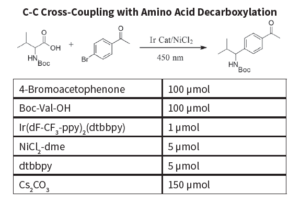 CC-cross-coupling-amino-acid