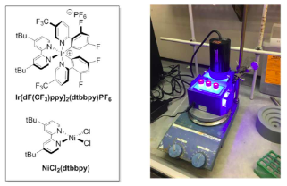 Photoredox Iridium–Nickel Dual-Catalyzed Decarboxylative Arylation Cross-Coupling: From Batch to Continuous Flow via Self-Optimizing Segmented Flow Reactor