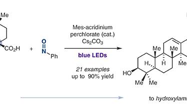 Photoredox Synthesis of Arylhydroxylamines from Carboxylic Acids and Nitrosoarenes