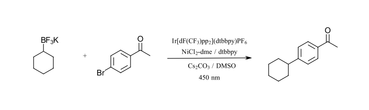 initial photochemistry reactions: C-C cross-coupling with BF3K reagents