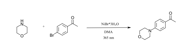 initial photochemistry reactions: C-N Cross-coupling reaction