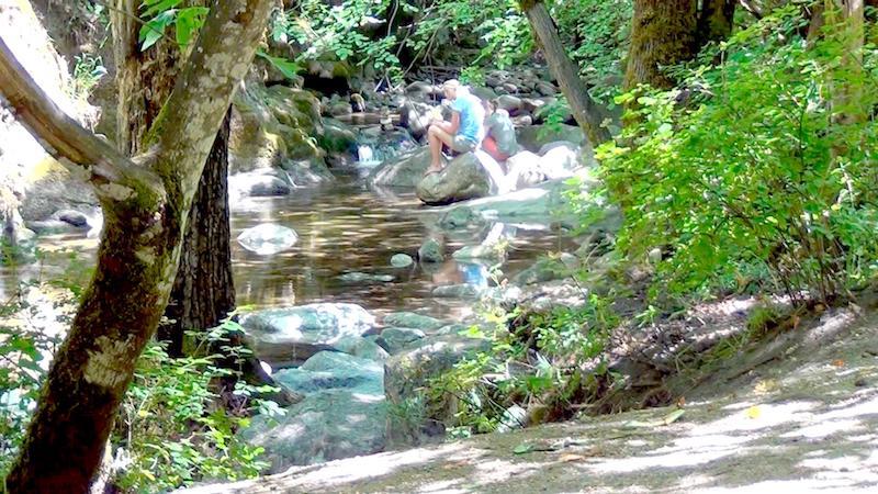 Ashland Oregon Hiking Trails Fairy Ponds