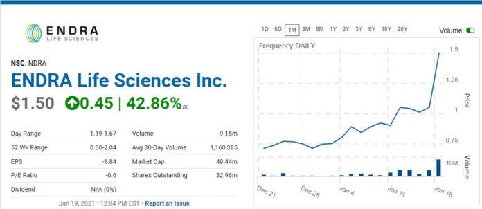 ENDRA, Biotech Stock Review