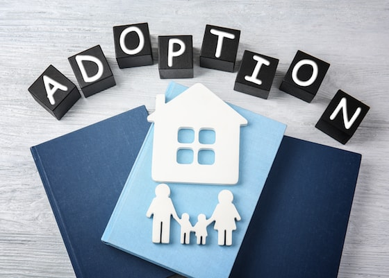 Adoption Home Studies