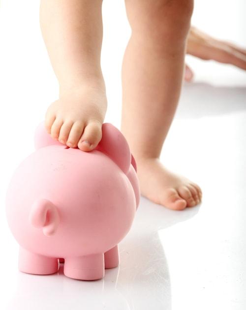 Identified Adoption Costs