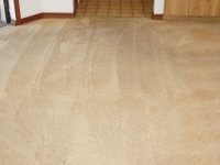 after smoke stained carpet picture