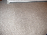 Before picture dirty carpet