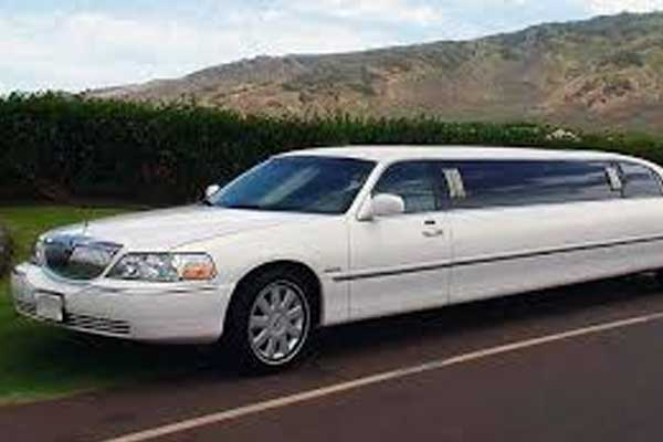 luis limo for nyc limo rental service