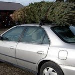 christmas tree on car